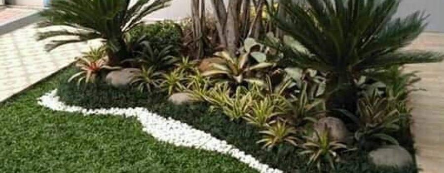 Jasa Rumput Taman Jogja